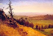 Albert Bierstadt Newbraska Wasatch Mountains oil painting picture wholesale