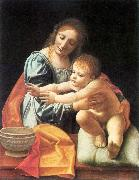BOLTRAFFIO, Giovanni Antonio The Virgin and Child fgh oil painting picture wholesale