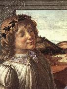 BOTTICELLI, Sandro Madonna and Child with an Angel (detail)  fghfgh oil painting picture wholesale