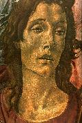 BOTTICELLI, Sandro San Barnaba Altarpiece (detail: head of St John) gdfg oil painting picture wholesale