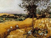 BRUEGEL, Pieter the Elder The Harvesters gf oil painting picture wholesale