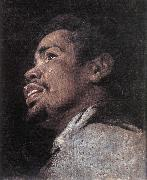 CRAYER, Gaspard de Head Study of a Young Moor dhyj Sweden oil painting reproduction