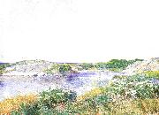 Childe Hassam The Little Pond at Appledore oil painting picture wholesale