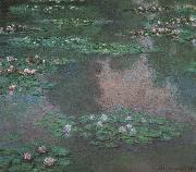 Claude Monet Waterlilies oil