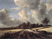 Jacob van Ruisdael Wheat Fields oil painting picture wholesale