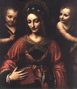 LUINI, Bernardino Saint Catherine a oil painting picture wholesale