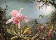 Martin Johnson Heade Cattleya Orchid Three Brazilian Hummingbirds oil painting artist