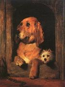 Sir Edwin Landseer Dignity and Impudence oil painting picture wholesale
