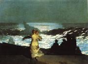 Winslow Homer A Summer Night oil painting picture wholesale