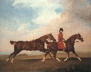 STUBBS, George William Anderson with Two Saddle-horses er oil painting artist