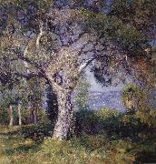 Guy Rose The Oak oil painting picture wholesale