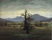 Caspar David Friedrich The Solitary Tree oil painting picture wholesale