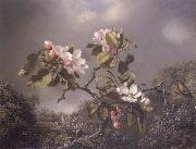 Martin Johnson Heade Apple Blosoms and Hummingbird oil painting picture wholesale
