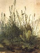 Albrecht Durer The Great Ture oil painting picture wholesale