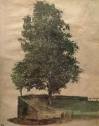 Albrecht Durer Linden Tree on a Bastion oil painting picture wholesale