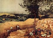 BRUEGEL, Pieter the Elder The Harvesters oil painting picture wholesale