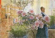 Carl Larsson Azalea oil painting picture wholesale
