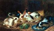 unknow artist Rabbits 116 Sweden oil painting artist