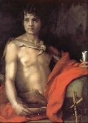 Andrea del Sarto Portrait of younger Joh oil painting picture wholesale