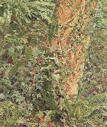 Albert Joseph Moore,ARWS Study of an Ash Trunk (mk46) oil painting picture wholesale