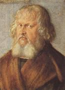 Albrecht Durer Hieronymus Holzschuher (mk45) oil painting picture wholesale