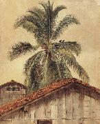 Frederic E.Church Palm Tres and Housetops,Ecuador oil painting