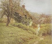 Helen Allingham,RWS South Country Cottage (mk46) oil painting picture wholesale