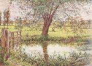 William Bell Scott Landscape with a Gate and Watermeadow (mk46) oil painting picture wholesale