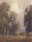 unknow artist Eucalyptus Landscape oil painting picture wholesale