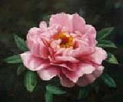 unknow artist Realistic Pink Rose oil painting picture wholesale