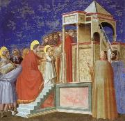Giotto Presentation of the VIrgin ar the Temple oil painting picture wholesale