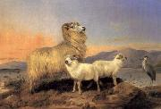 Richard ansdell,R.A. A Ewe with Lambs and A Heron Beside A Loch oil painting artist