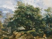 Jules Coignet Old Oak in the Forest of Fontainebleau oil