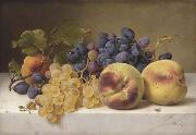 Johann Wilhelm Preyer A Still Life with Peaches and Grapes on a Marble Ledge oil