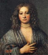 Girolamo Forabosco Portrait of a Woman oil painting artist