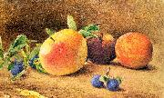 Hill, John William Study of Fruit oil painting picture wholesale