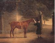 John Ferneley Mr Wombell's Hunter with a Groom in a Courtyard oil painting artist