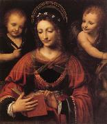 LUINI, Bernardino St.Catherine oil painting picture wholesale