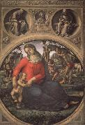 Luca Signorelli Madonna and Child with Prophets oil painting picture wholesale