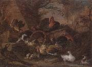 unknow artist Still life of fowl in a farmyard,with a cat stealing a bantam chick oil painting picture wholesale