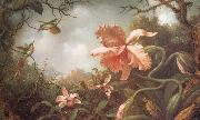 Martin Johnson Heade The Hummingbirds and Two Varieties of Orchids oil painting picture wholesale