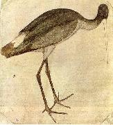 PISANELLO Stork oil painting picture wholesale