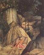 Lorenzo Lotto Jerome in the Desert (mk05) oil painting picture wholesale