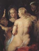 Peter Paul Rubens Venus at the Mirror (MK01) oil painting picture wholesale