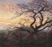 Caspar David Friedrich Tree with Crows (mk10) oil painting picture wholesale