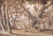 Claude Lorrain Wooded View (mk17) oil painting picture wholesale