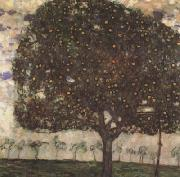 Gustav Klimt Apple Tree II (mk20) oil painting picture wholesale