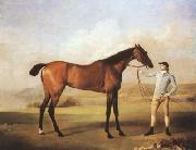 STUBBS, George Molly Longlegs with Jockey (mk08) oil painting picture wholesale