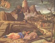 Andrea Mantegna The Agony in the Garden (nn03) oil painting picture wholesale