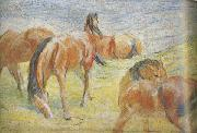 Franz Marc Graing Horses i (mk34) oil painting picture wholesale